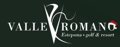 valle romano logo
